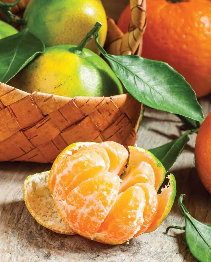 Mandarinas Por mayor