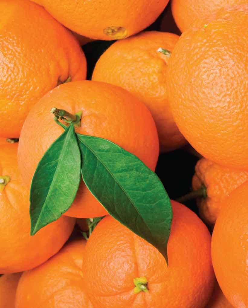 Naranjas Baratas