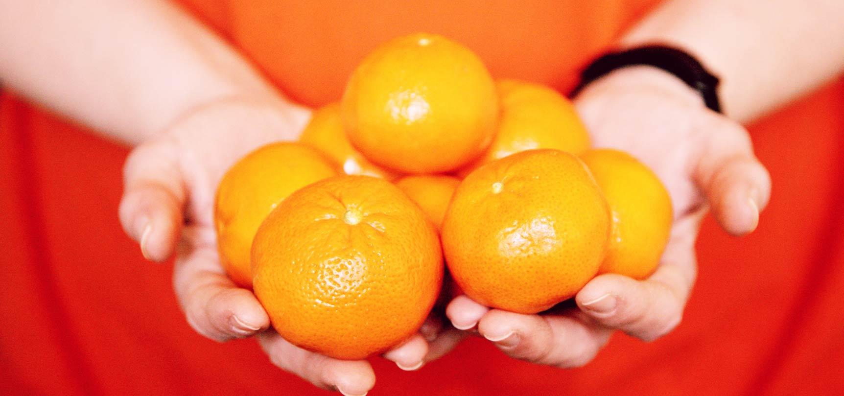 mandarina-clementina