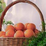 Cómo conservar naranjas: 9 consejos